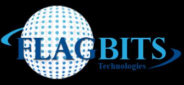 FlagBits Logo