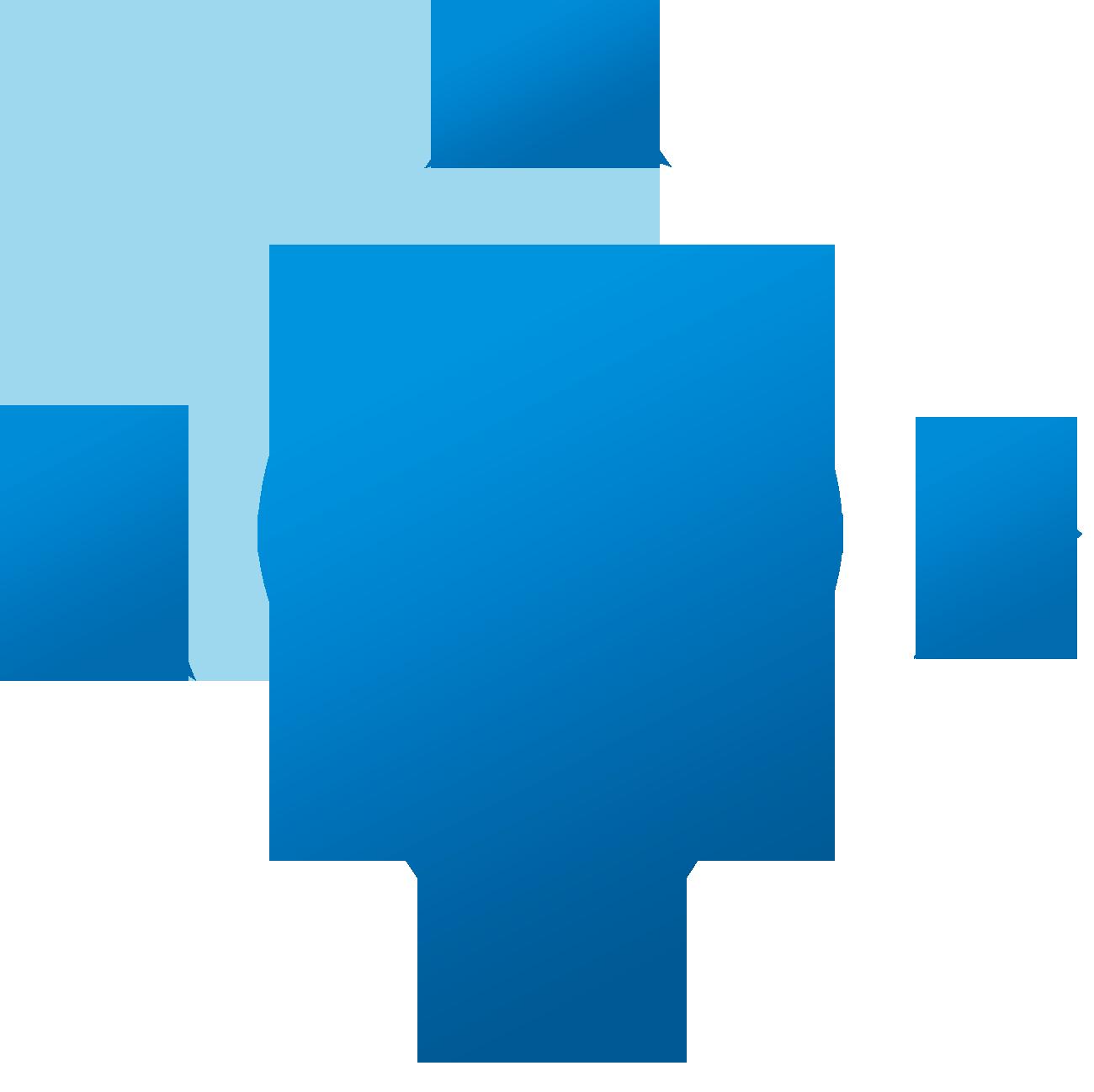 flagio Logo