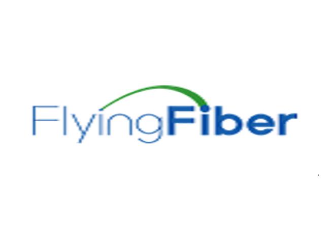 Shenzhen Flying Fiber Co.,Ltd. Logo