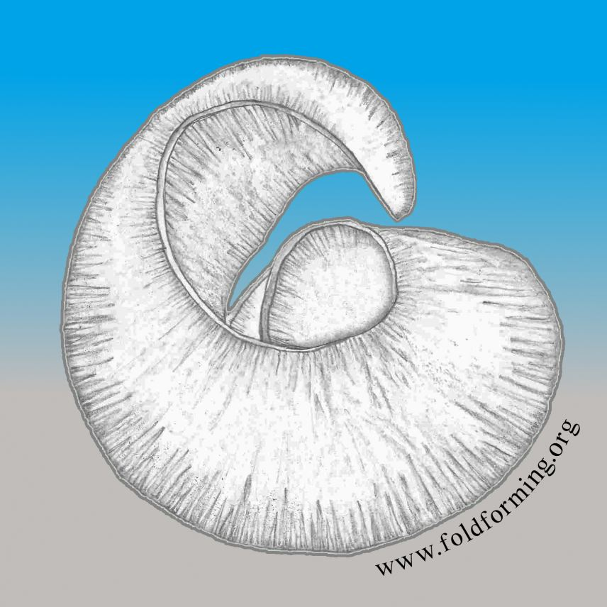Foldforming Hub Logo