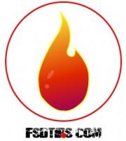 FSDtips.com Logo