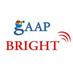 GAAP Bright E-Learning Pvt. Ltd Logo