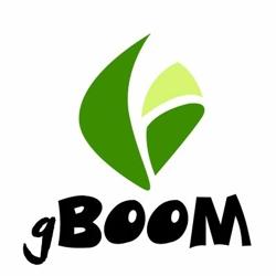 Gboom Software Logo