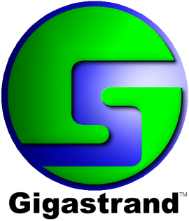 Gigastrand International Logo