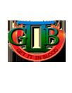 GIIB LLC Logo