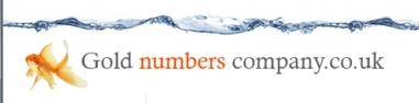 Gold Numbers Company Logo