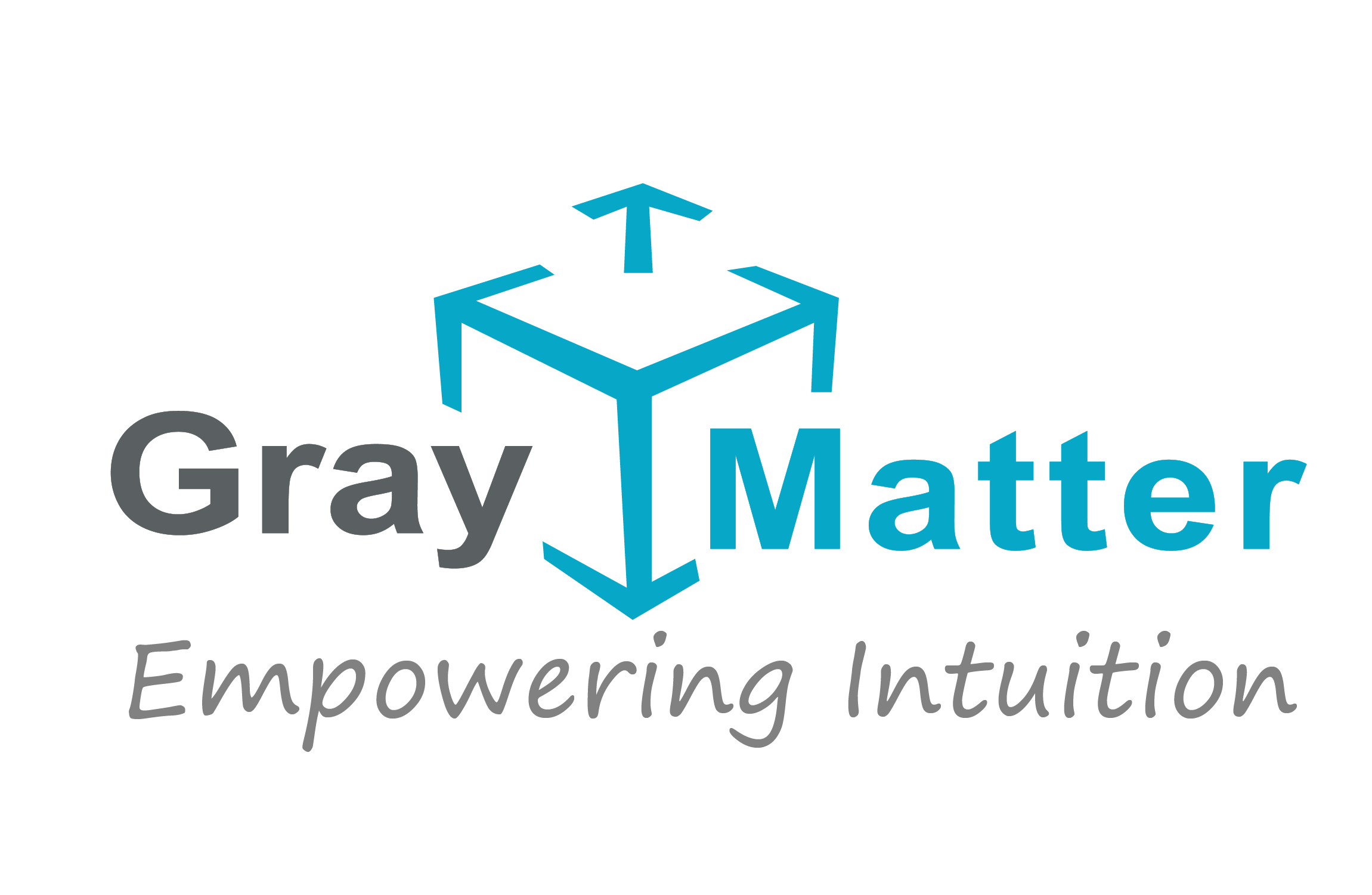 GrayMatter Software Services Pvt Ltd Logo