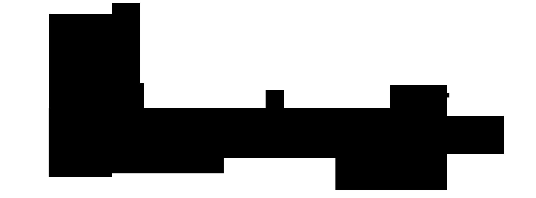 Handwrytten Logo