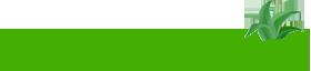 Healthlozenge Logo