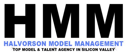 HMM 408 Logo