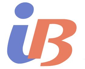 iB Management Solutions Logo