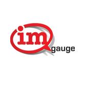 imGauge Logo