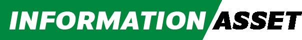 information-asset Logo