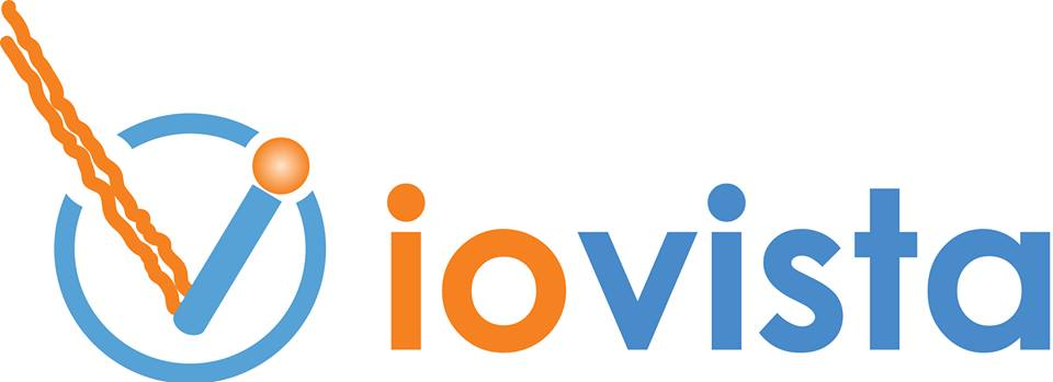 ioVista Inc Logo