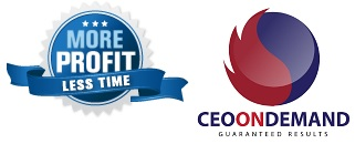 More Profit Less Time/ CEO-ONDEMAND Logo