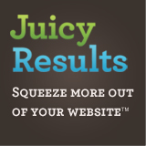 Juicy Results Internet Marketing Logo