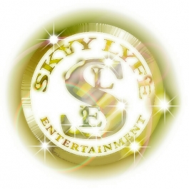 SKYY LYFE ENTERTAINMENT NY Logo