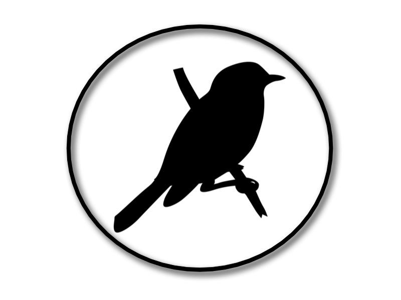 King Bird Productions Logo