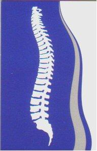 Landrum Spine and Sport Chiropractic Logo