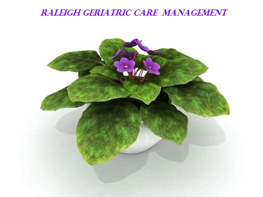 Raleigh Geriatric Care Management Logo