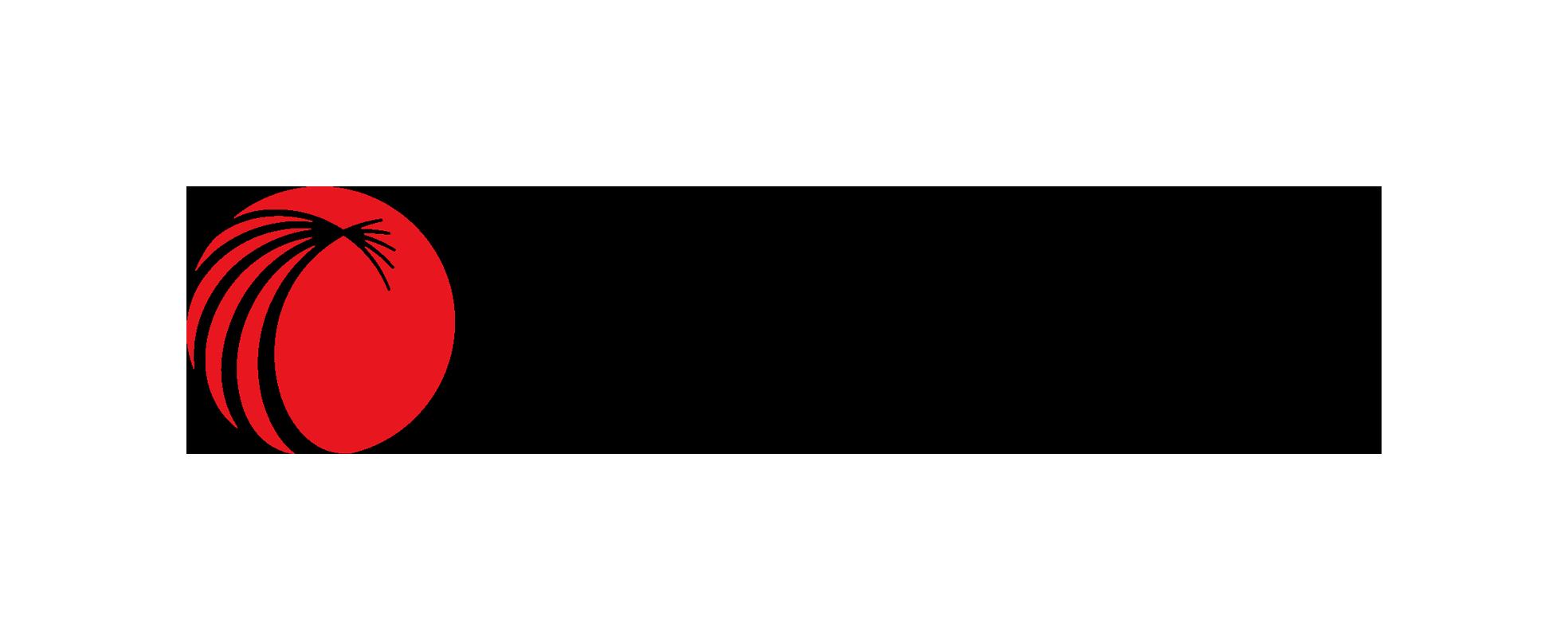 lexisnexisindia Logo