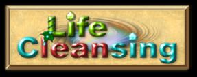 lifecleansing Logo