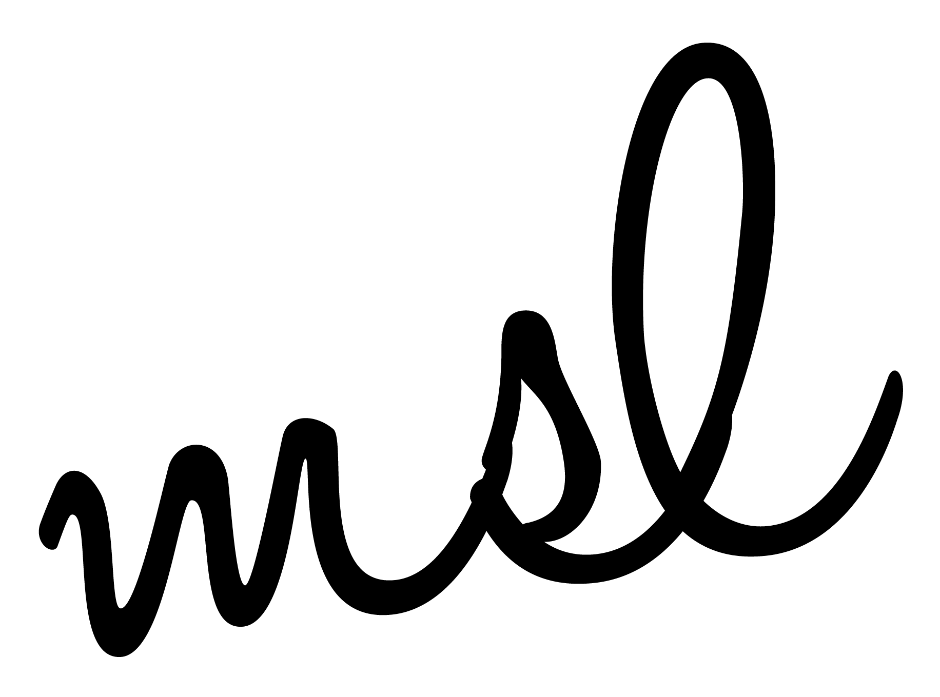 matchsetlove Logo