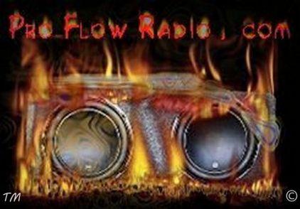 Pro Flow Radio Logo