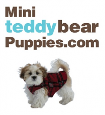 miniteddybearpuppies Logo