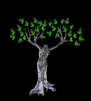 kyamites Logo