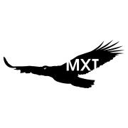 MXT Global Logo