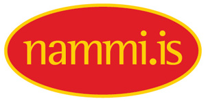 nammiiceland Logo