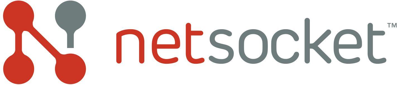 Netsocket Logo