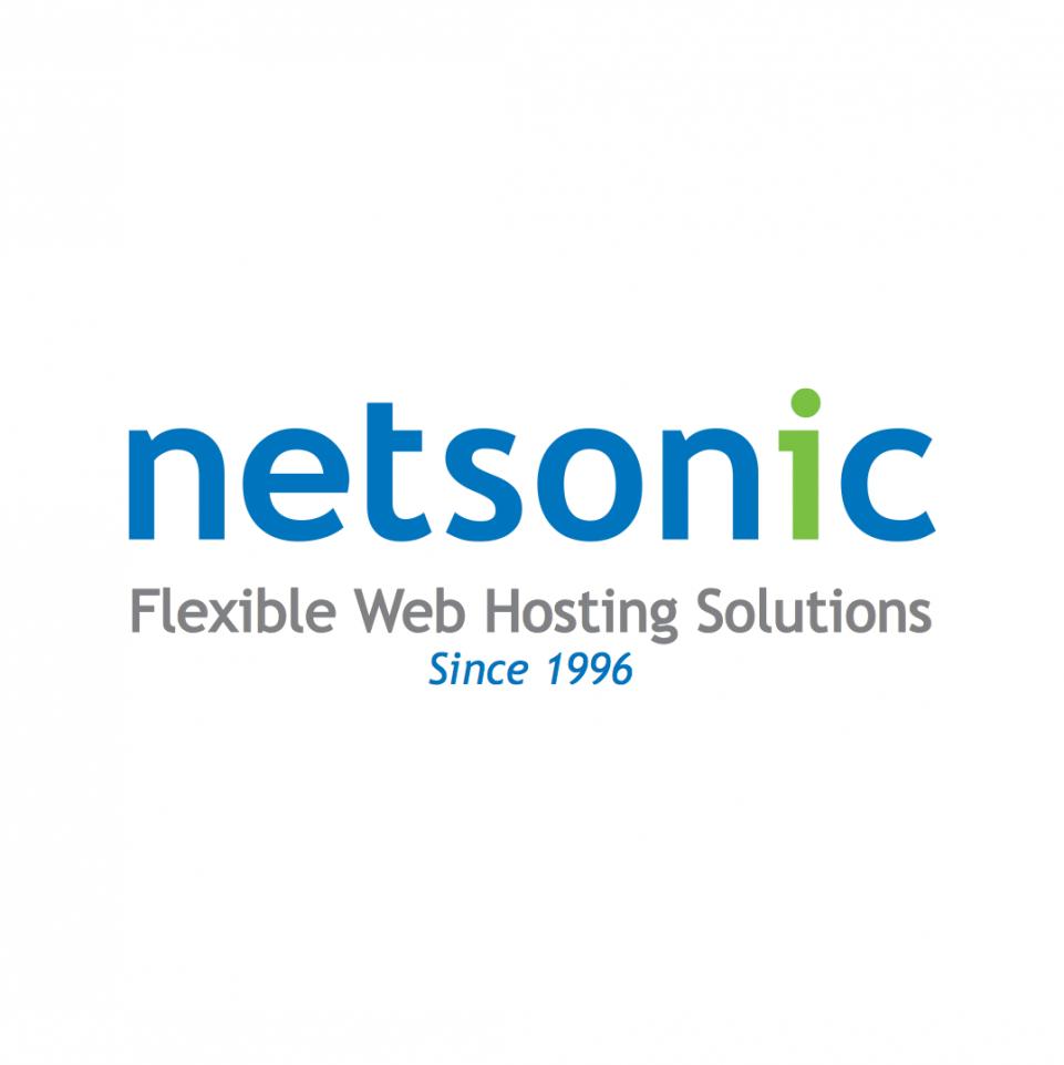 Netsonic Logo