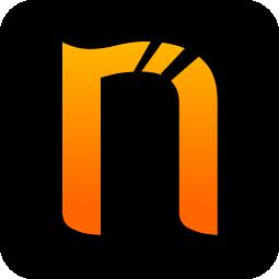 Netsparker Ltd Logo