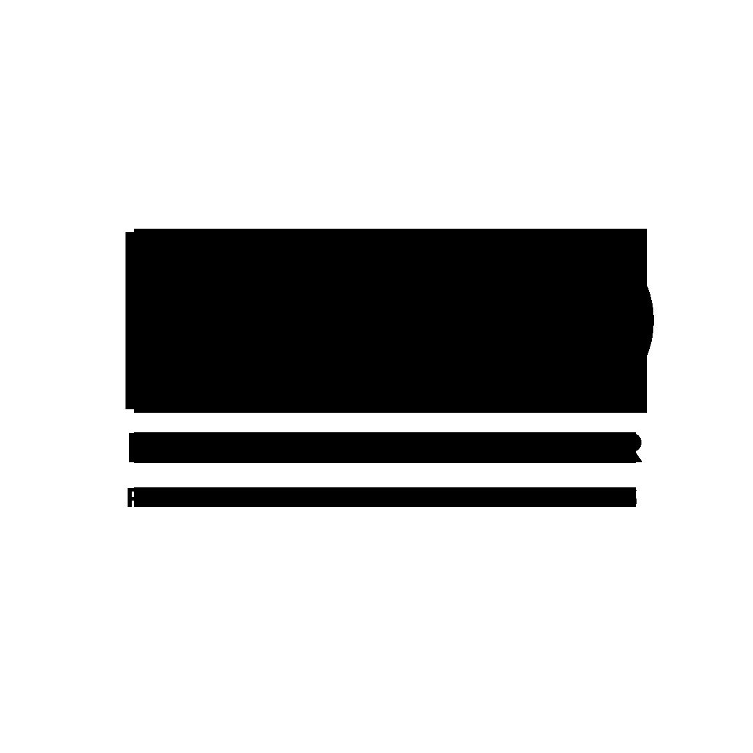 Nevada Garage Repair Logo