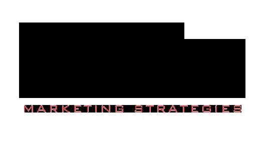 Niche Marketing Strategies Logo