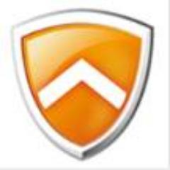 nprotectonline Logo