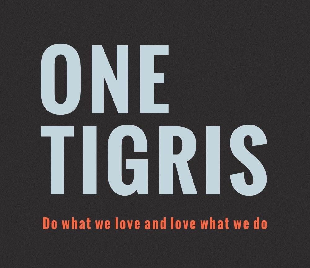 OneTigris Logo