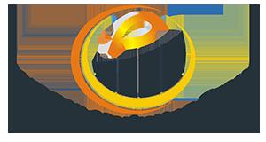 Paragon Marketing Group Logo