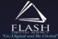 Flash Digital Agency Logo