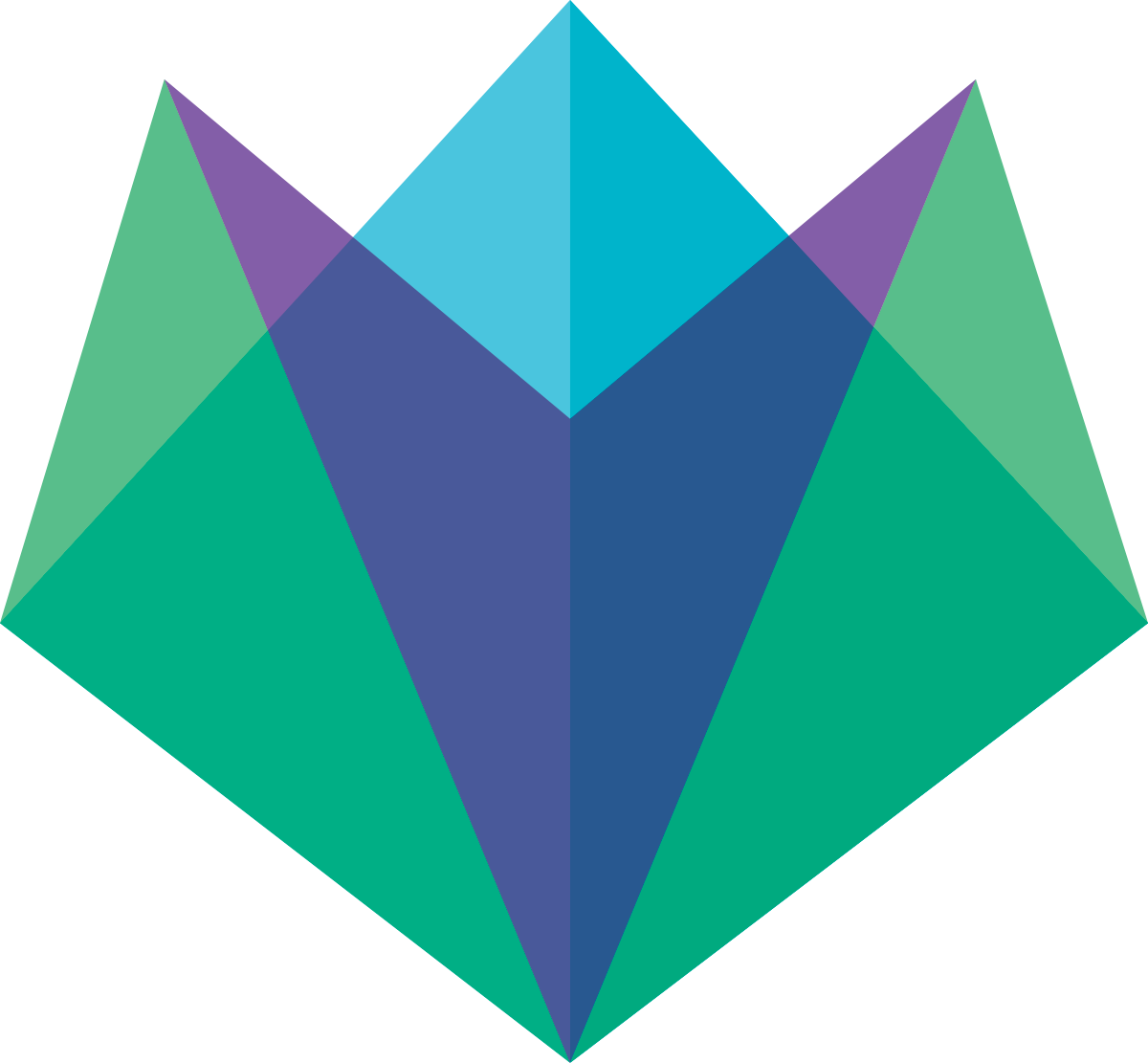 Peak Websites Logo