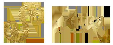 petranicoll Logo