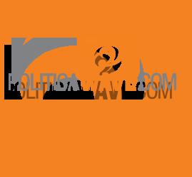 PoliticaWave Logo