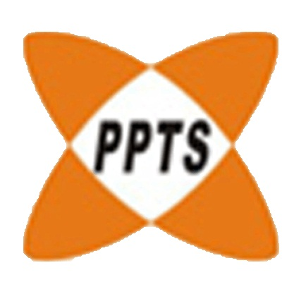 Point Perfect Technology Solutions Logo
