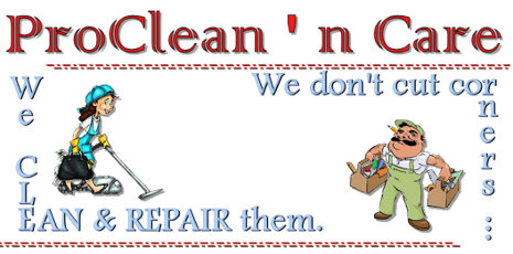 ProClean 'n Care Logo