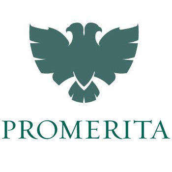 Promerita Financial Corp Logo