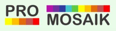 ProMosaik Logo
