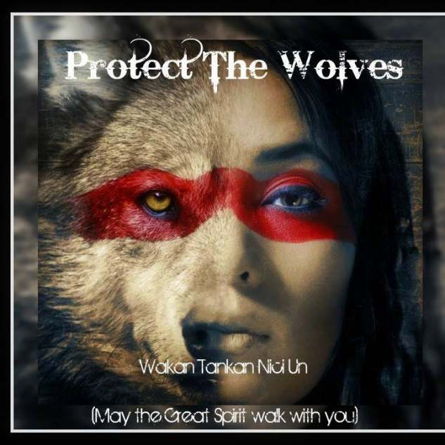 Protect The Wolves Sanctuary Logo