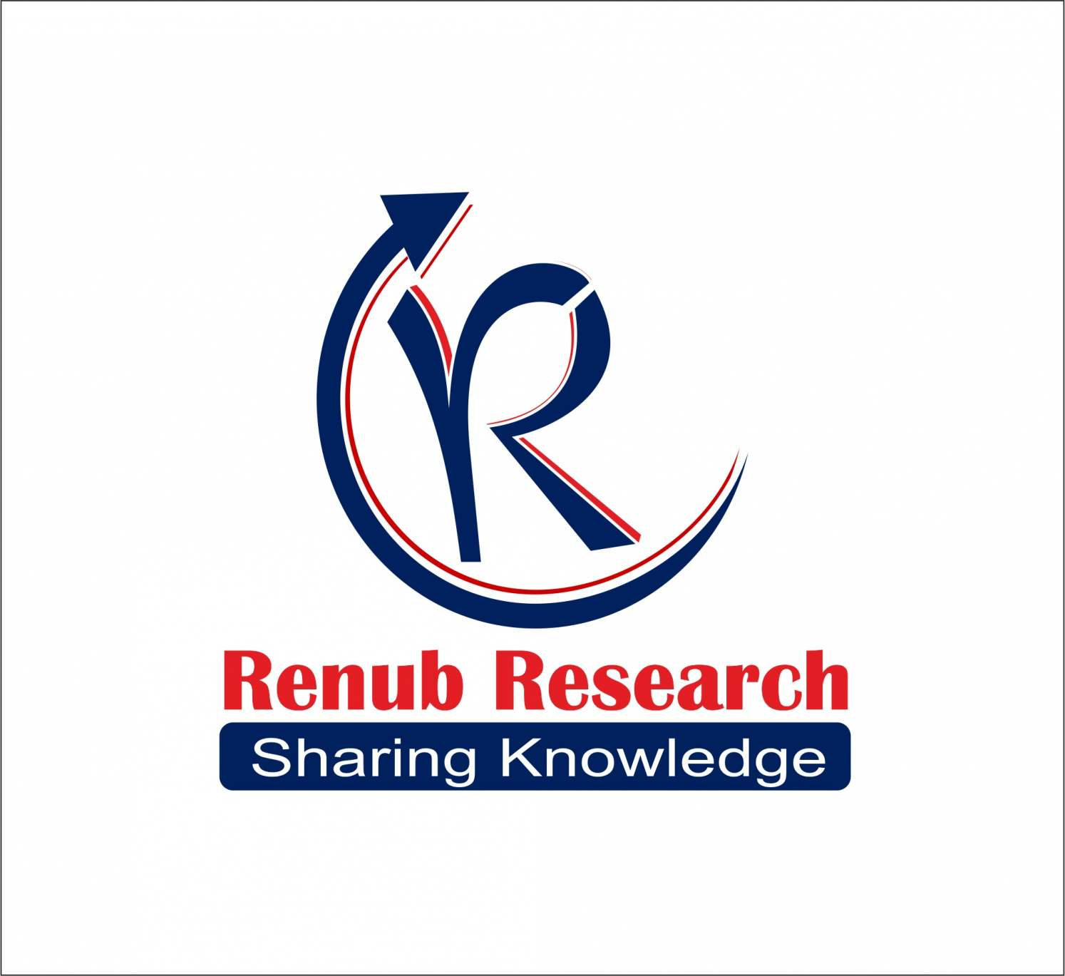Renub Market Research Logo
